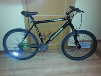 Cannondale SobeComp