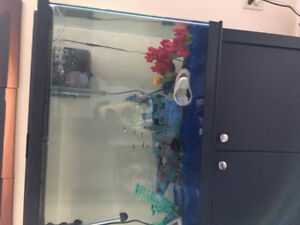 45 gallon fish tank with stand