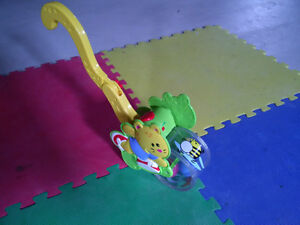 Fisher Price Baby Gymtastics Bat And Push Cheetah