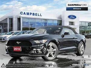 2016 Ford Mustang V6-LOADED ONLY 11,000 KMS