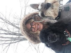 PENSION ET TOILETTAGE CHEZ MONSIEUR XAVIER (chiens)