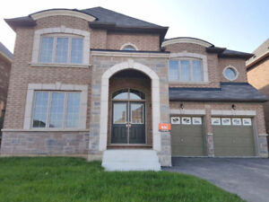 Brand new 4 bedroom detached house in Newmarket