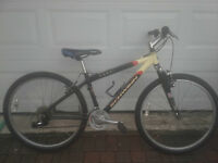 Original Schwinn Messa Mountain Bike