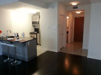 Luxury studio condo next to Ottawa University, downtown - Byward