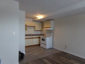 CHANGE IS HERE - 2 BEDROOM APARTMENTS FOR RENT IN BLENHEIM
