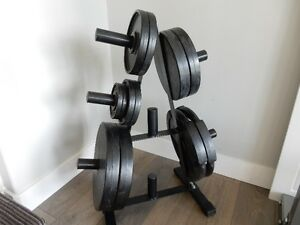 Free Weights w/ rack