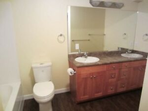 2 Bed/ 1 Bath Bsmt Suite