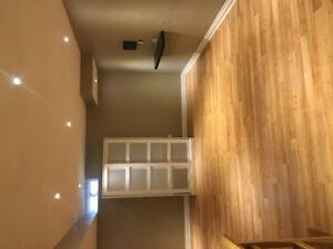 Beautiful basement apartment for rent