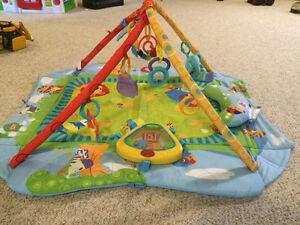 Bright Starts play place playmat Windsor Region Ontario image 2