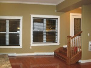 Beautiful downtown apartment  with PARKING ! St. John's Newfoundland image 15