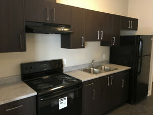 Beautiful One Bedroom Suite Available for January 1st, 2019!