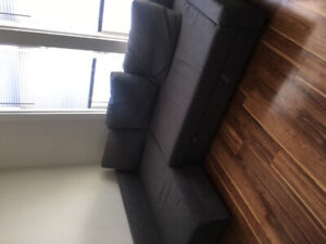Moving Sale! Couch/Pull-Out Bed and Queen Mattress!
