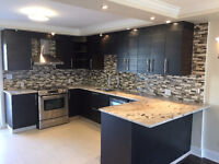 Fully Renovated Luxury Lower Duplex for Rent