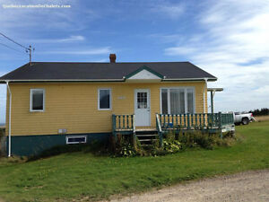Island Vacation Rental