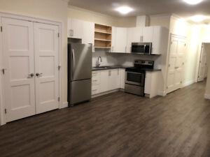 New 1 bedroom basement suite , great location