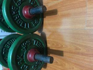 Weight Plates, Dumbbells, Bench Press Bar