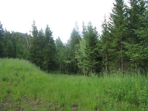 Build your dream home in one of Williams Lakes finest locations Williams Lake Cariboo Area image 3