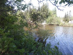 bord de l'eau Chertsey*Lac Jaune