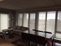Looking for a roommate at LSV in griffintown! fully furnished!