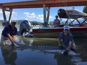 All inclusive 8 hour Sturgeon Fishing trip on the fraser!