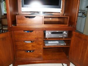 Huge custom Armoire/media /display cabinet