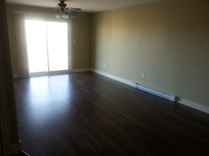 BEAUTIFUL RIVERVIEW apt--call superintendent AND COME SEE!