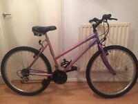 Ladies universal bike*delivery