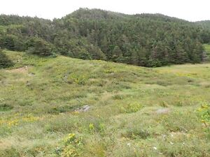 Land For Sale Point Verde Placentia Area St. John's Newfoundland image 4