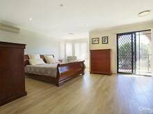 """Quick Sale """"Parkay Solid"""" 12mm AA Laminate Floating Floors Old Guildford Fairfield Area Preview"""