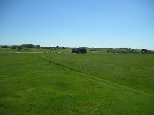 4-acre estate lots in Calterra Country Estates (West Balzac)