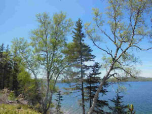 1.9 Acre Waterfront on Bras d'Or Lake