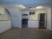 Newly Renovated Basement Appartment