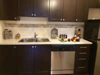 BEAUTIFUL FULLY RENOVATED 1 BEDROOM! 1 MONTH FREE RENT