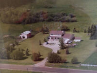 Immediate Occupancy Drayton Valley Area Acreage