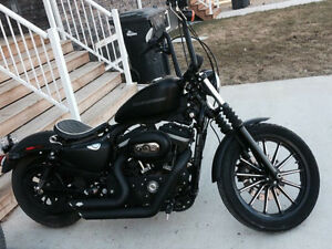 Harley 883 black iron