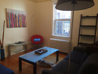 Amazing 3.5 apartment in the heart of downtown Montreal