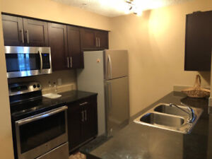 Southside 2 Bed 1 Bath Apartment with 1 Parking Stall