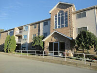 lovely 2bedroom condo with laundry St.Catharines