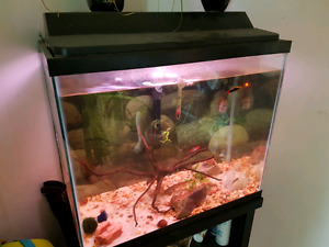 Aquarium with stand- fish not included