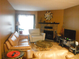 2 bed room fully furnished condo for rent.