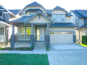$3150 / 4br - 3500ft2 - a brand new house for rent in South Surr