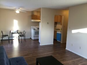 Two beds Apartments for Rent