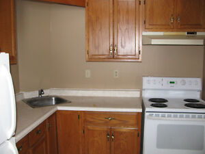 1 Bedroom apt in Shallow Lake