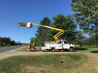 Complete Tree Services. Serving Bathurst and area.