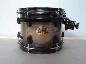 """Looking for a Ludwig Element 10"""" Tom (see description)"""