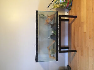 55 gal aqaurium and accessories 250 obo