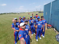 T20 Cricket league in Mississauga
