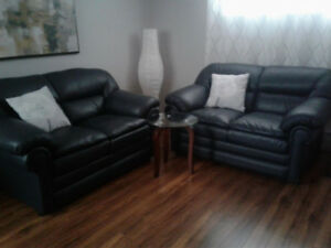 2 sofa 2 places