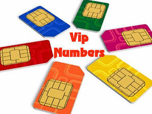 VIP GOLD BRONZE SILVER NUMBERS 416-201-2221 416-939-9499