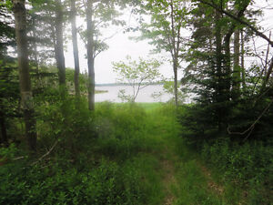 Building lot, saltwater frontage - Musquodoboit Harbour
